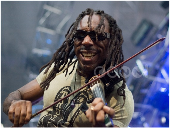Boyd Tinsley - By Conni Freestone